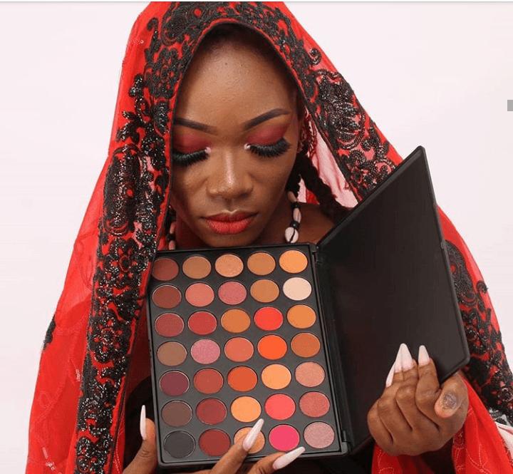 maquillage FEILA- RMIbow 35 hues eyeshadow palette- SETALMAA