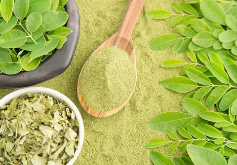 Le moringa : l'ingrédient beauté star du moment